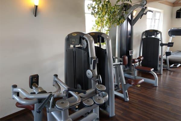 Fitness-Studio Fitnessgeräte Rückentraining